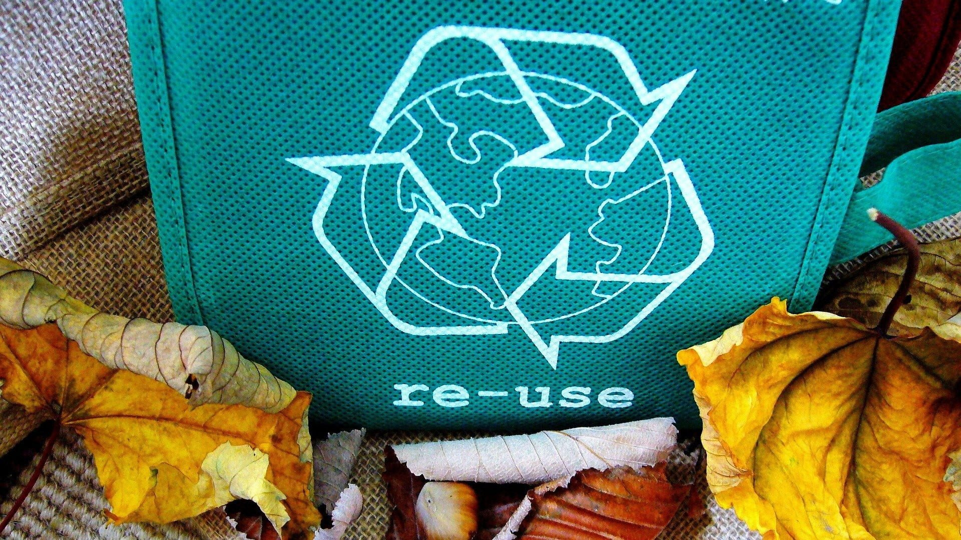 a green reusable shopping bag surrounded by autumn leaves
